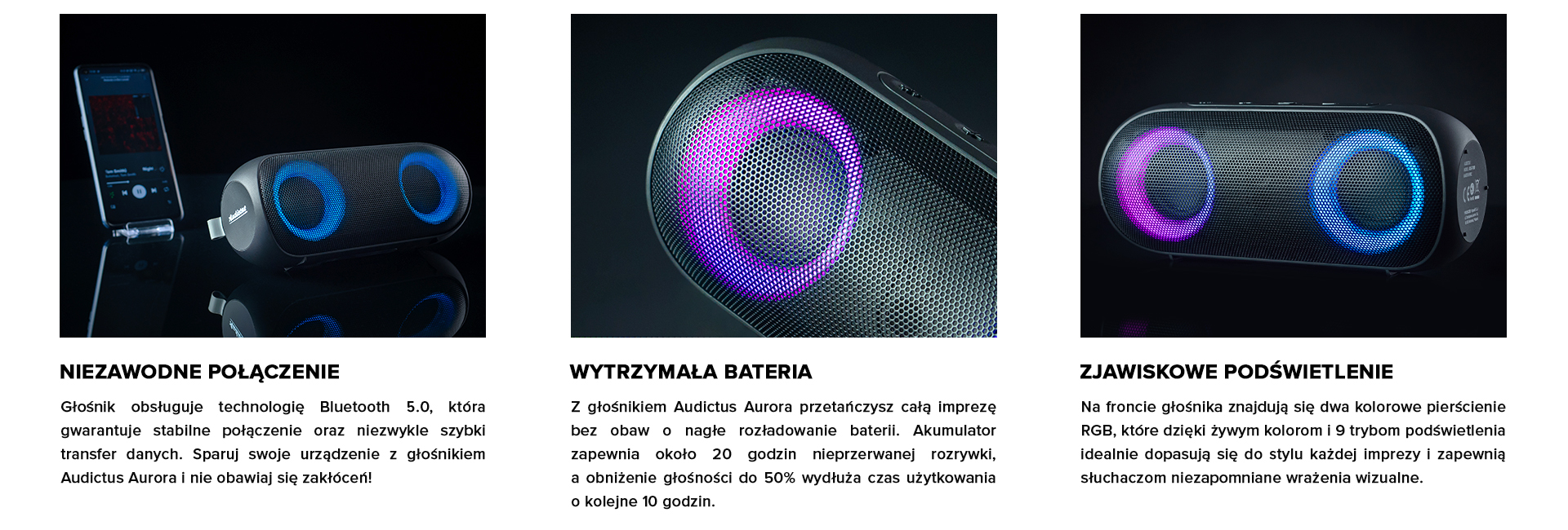Podpunkty - Audictus Aurora